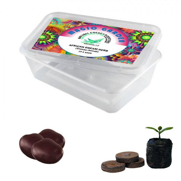 Sada pro pěstování - African Dream Herb - Magic garden